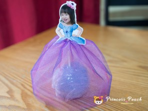 Tulle Blueberry Princess