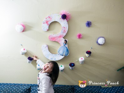 Blueberry Birthday Party Decoration