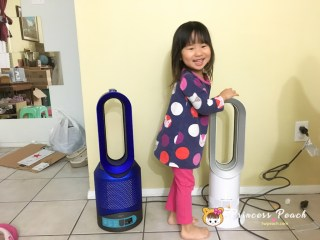 Dyson AM09 fan Heater vs. Dyson Pure Hot + Cool Link Air Purifier