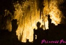 美國: 全世界第七大的鐘乳石洞穴 – 卡爾斯巴德洞窟國家公園 (Carlsbad Caverns National Park, NM)