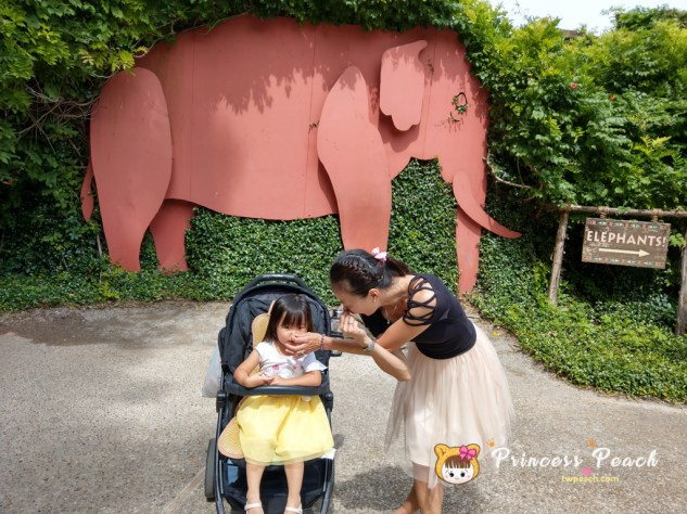 Fort Worth Zoo 大象