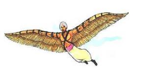 عباس بن فرناس لم يكن مجرد شخص يجرب الطيران ولَم يكن سقوطه سبب وفاته