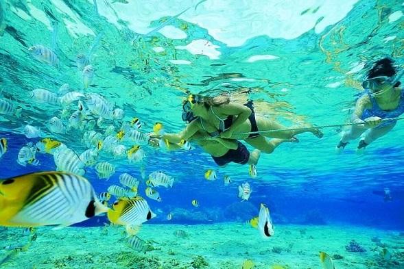 Mauritius Honeymoon - Blue Bay Marine Park - Rent a Guide