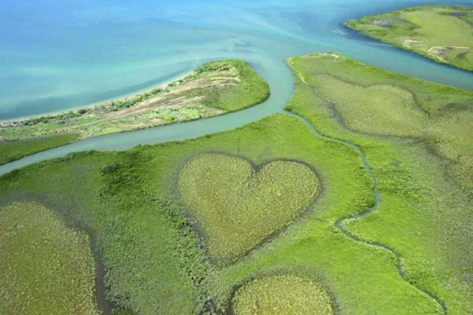 New Caledonia Honeymoon - The Heart of Voh - Our Honeymoon Destinations