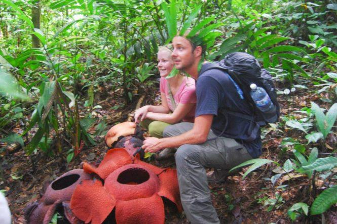 Rafflesia 2 - Ecocameron