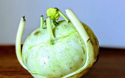 Seasonal Eating in August: Zucchini, Beets and Kohlrabi
