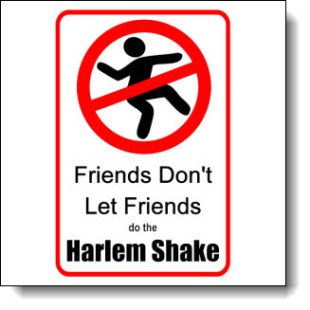 Just say no to the Harlem shake with these awesome tee shirts!