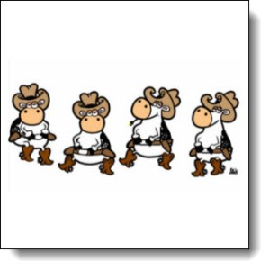 Line Dancing Cows will Mooooove you to Laugh!