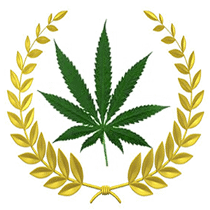 Texas legalize marijuana 2020