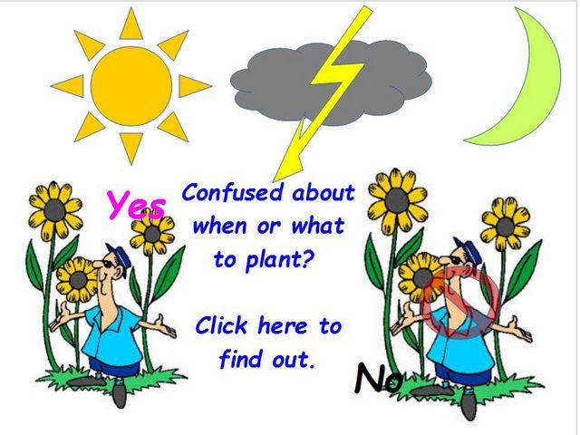 Gardening Reminders