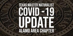 Covid-19 Update - Link