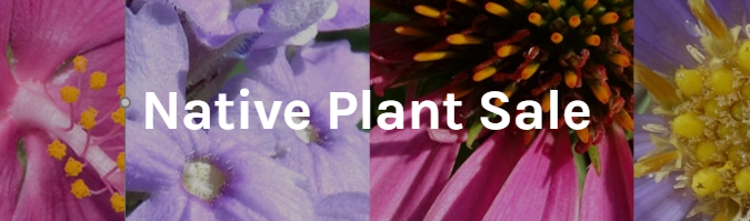 Native Plant Sale 2020