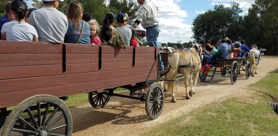 SNF 2018:   Horse Drawn Wagon rides