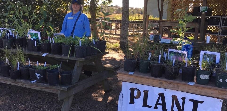 SNF 2018: CAROL HAWKINS AT THE PLANT SALE