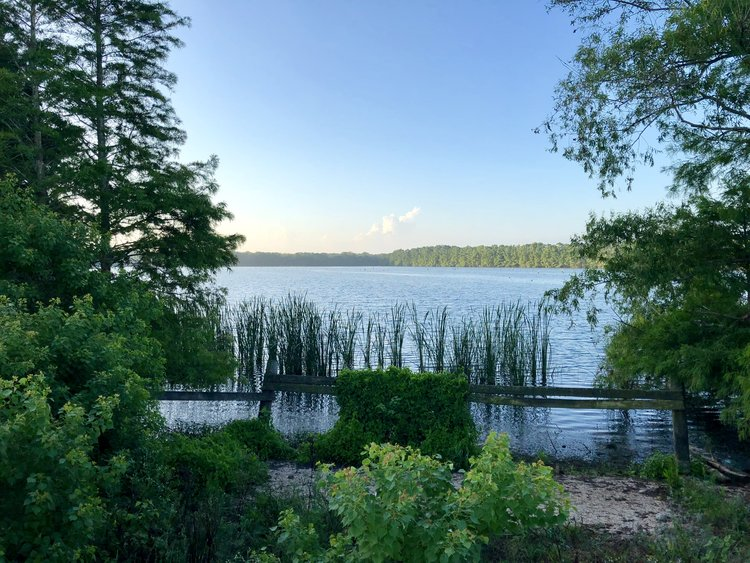 Lake in the Burr Property in Wharton county