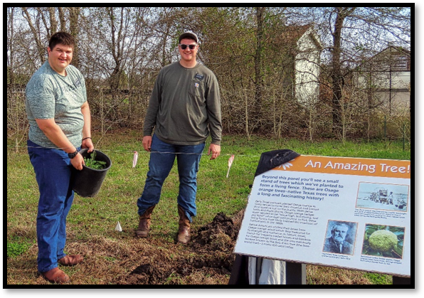 Tree planting project at Seabourne Park
