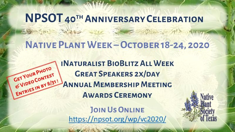 Poster - NPSOT 40th Anniversary Celebration - October 18-24, 2020