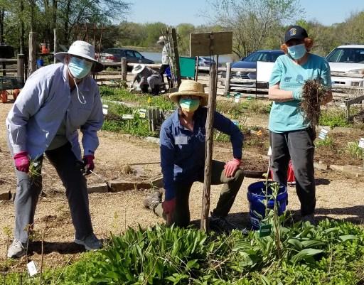gardeners in demo garden