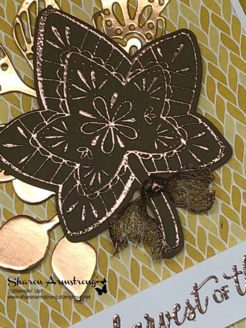 falling for leaves card
