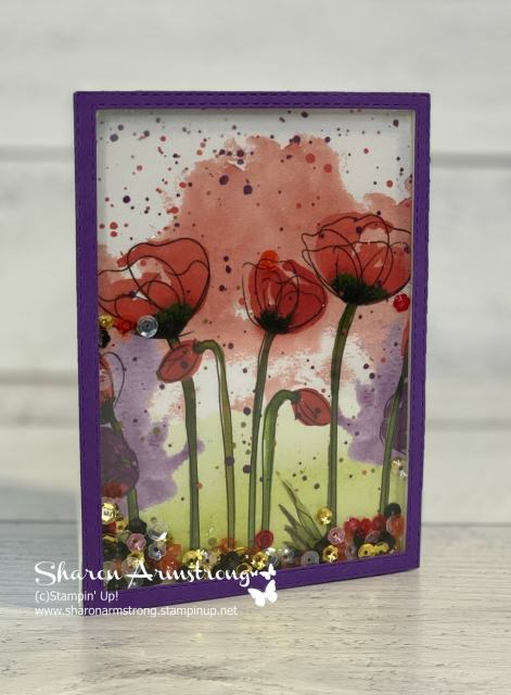 shaker-card-tutorial-with-beautiful-red-poppies-in-background