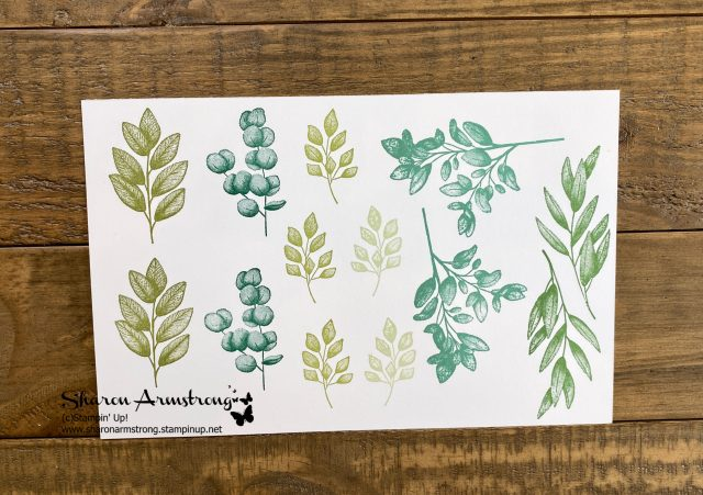 split-card-technique-for-handmade-cards-by-Sharon-Armstrong