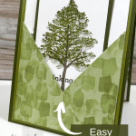 Making A Pocket Card Is Great Fun! Learn How