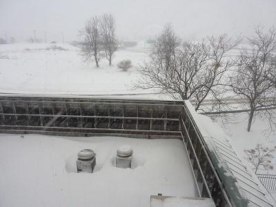 NY - snow