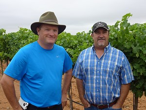 High Plains Vineyards - Timmons