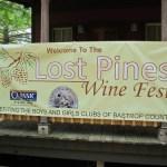 2013 Lost Pines Wine Fest