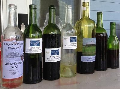 Paradox - wines