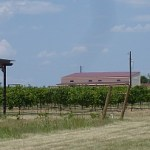 Blue Lotus Winery and Texas Mead Works