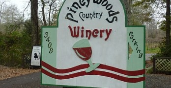Piney Woods - featured