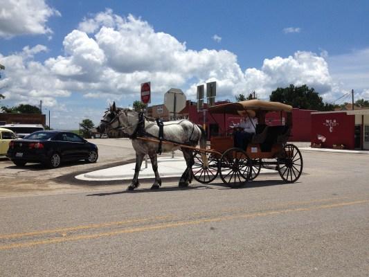 Firelight Vineyards carriage rides