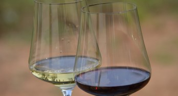 Gabriel-Glas wine glasses