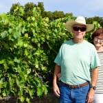 TWL017 – Alamosa Wine Cellars Farewell