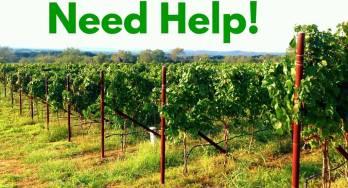 Need Help!