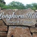 Longhorn Hills Vineyard & Winery Preview