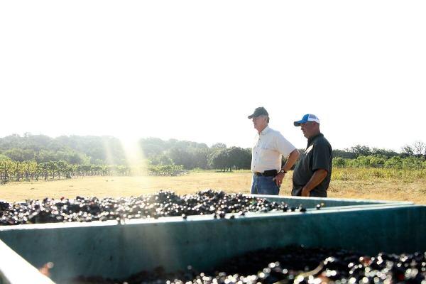 Pat Brennan & Todd Webster at Harvest