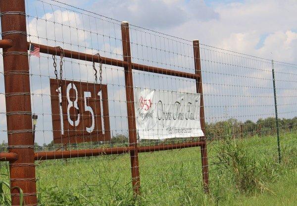 1851 Vineyards sign
