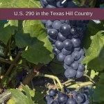 eBook Visitor's Guide: U.S. 290 in the Texas Hill Country