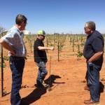 Carl's Epic High Plains Vines to Wine Extravaganza – Part 2