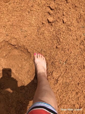 Foot in Sandy Soil