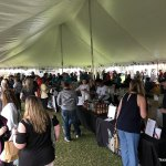 Preview of some October 2021 Texas Wine Festivals