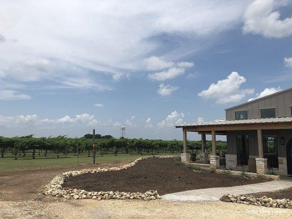 3 Texans Winery and Vineyard