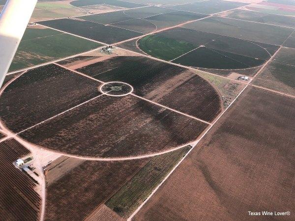 Arial view of Reddy Vineyards