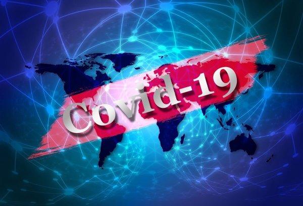 Coronavirus COVID-19 Texas wineries
