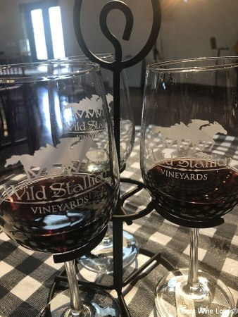 Wild Stallion Vineyards glasses