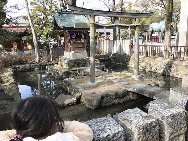 参道の脇にある亀の「放生池」。冬で冬眠しているのか亀がおらず子供は不満げです。