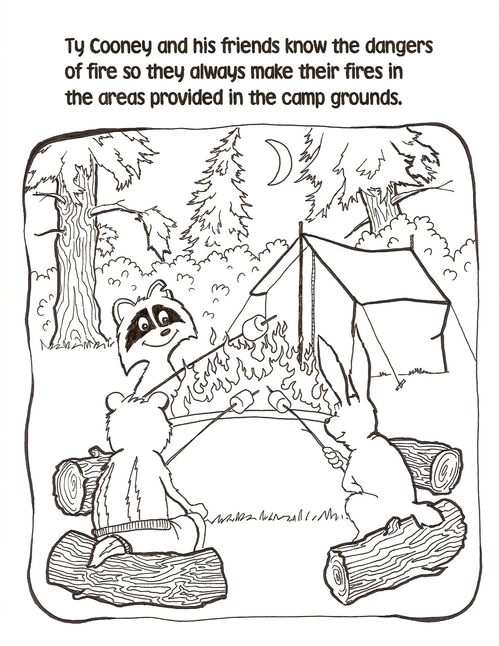 Campfire Safety