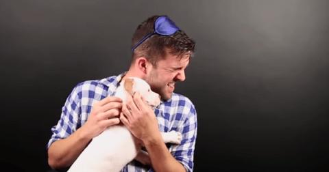 Людям с кинофобией дали щенков питбуля: почти 9 млн просмотров на YouTube